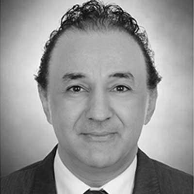 Prof. Dr. Ehab Ezzat - Lead Designer